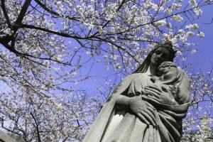 Май - месяц Марии