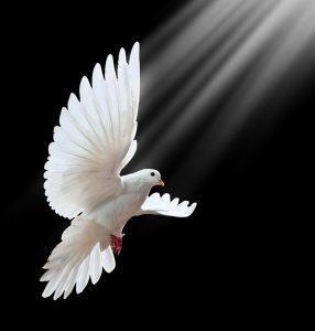 7 даров Святого Духа